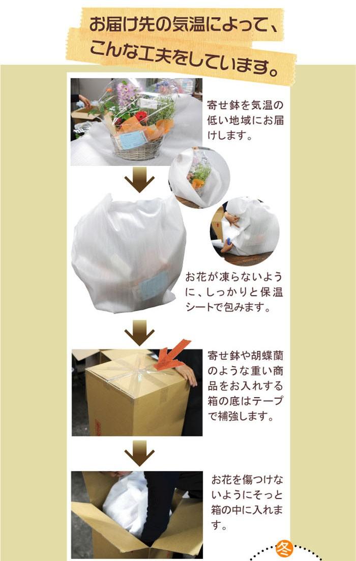 花の贈り物・フラワーギフトを鮮度を守る