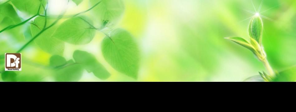 DFG 植物育成ライト専門店