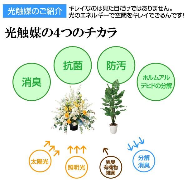 光触媒により消臭?抗菌?防汚?ホルムアルデヒドの分解効果があります。
