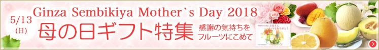 母の日ギフト特集