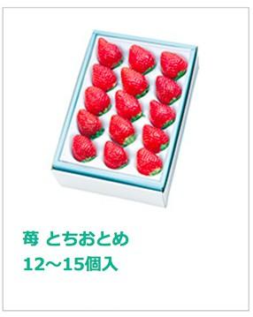 とちおとめ 12〜15個入 No10