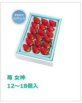 苺 女神 12〜18個入