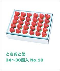 とちおとめ 24〜30個入 No10