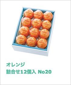 オレンジ詰合せ 12個入 No20