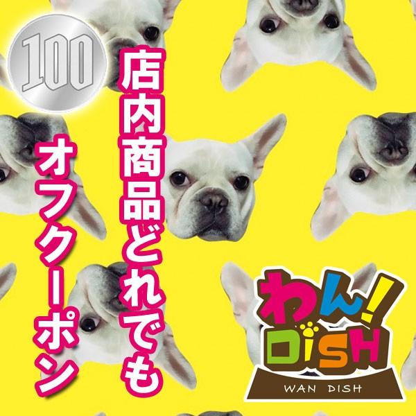 【2月もやります!】どれでも購入100円OFF☆