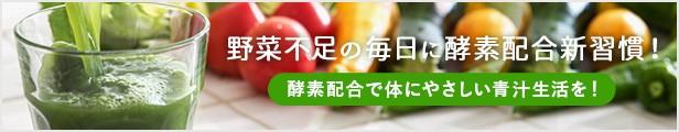 緑茶青汁酵素 ドリンク 野菜不足