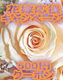 花嫁応援キャンペーン!ウェディングブーケ期間限定の500円クーポン!