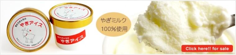 やぎミルク100%使用