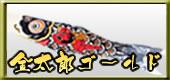 鯉のぼり 金太郎ゴールド