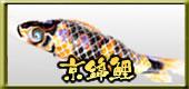 鯉のぼり 京錦鯉