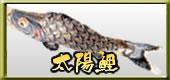 鯉のぼり 太陽鯉