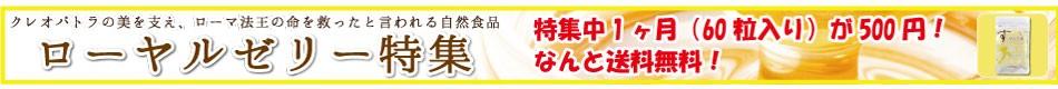 500円ローヤル