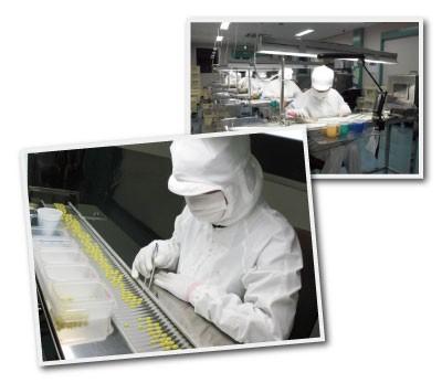 清潔な工場