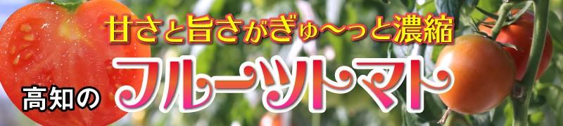 """""""高知のフルーツトマト"""""""