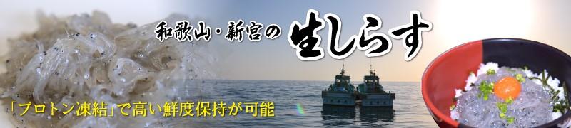 """""""和歌山・新宮の生しらす"""""""
