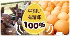 平飼い有精卵を100%使用