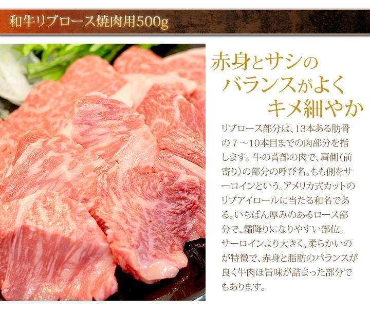 【送料無料】10,000円ポッキリ!超豪華牛焼肉セット
