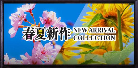 春夏新作コレクション