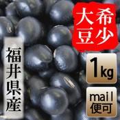 福井県産 黒豆