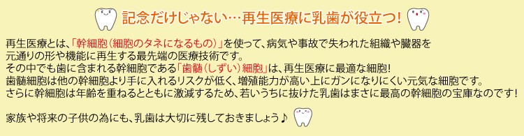 乳歯ケース