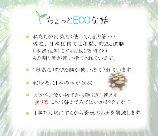 竹箸を使ってエコ