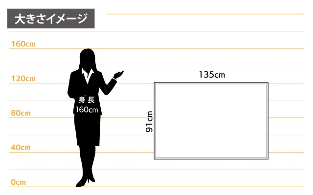 女性とのサイズ比較
