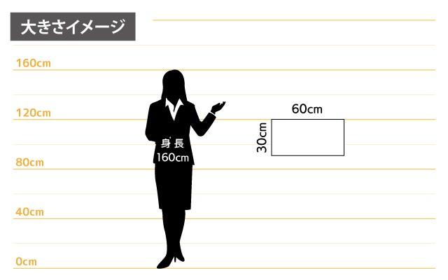 マグネットシート女性とのサイズ比較