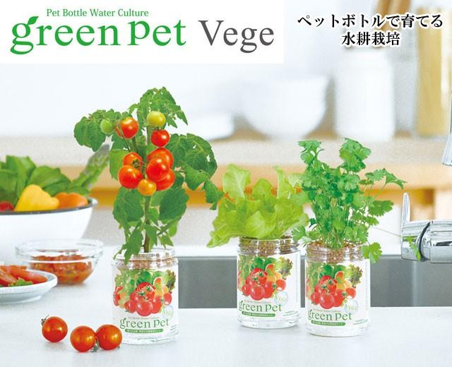 『栽培セット』 育てるグリーンペットベジ001
