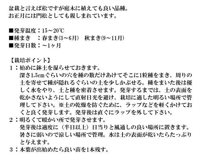 『栽培セット』 染付小紋盆栽栽培セット004-2