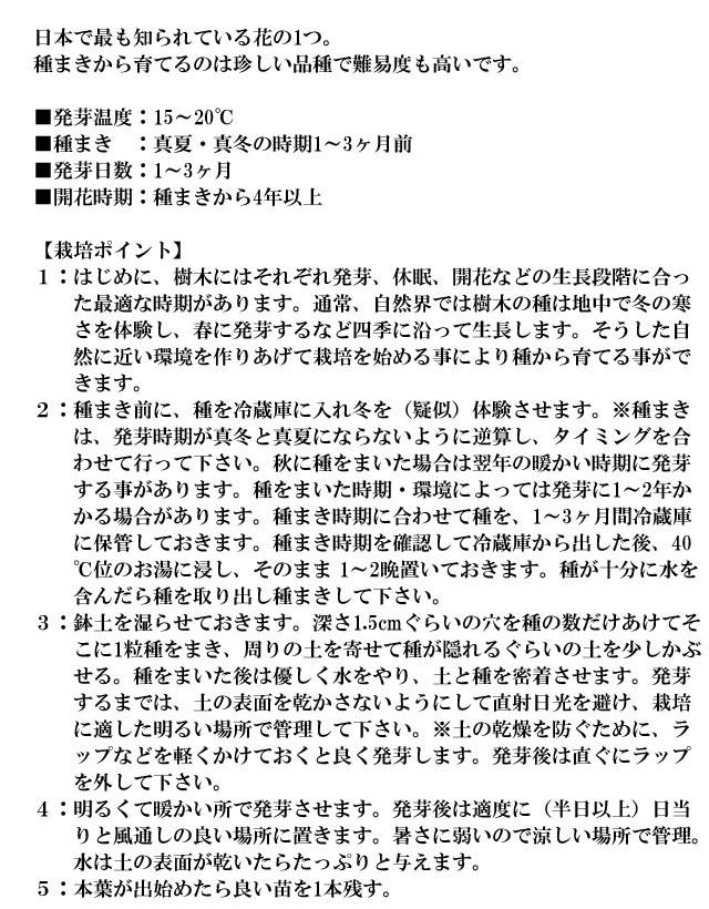 『栽培セット』 染付小紋盆栽栽培セット005-2