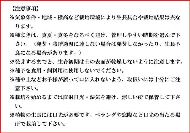 『栽培セット』 染付小紋盆栽栽培セット007