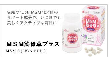 MSM筋骨草プラス