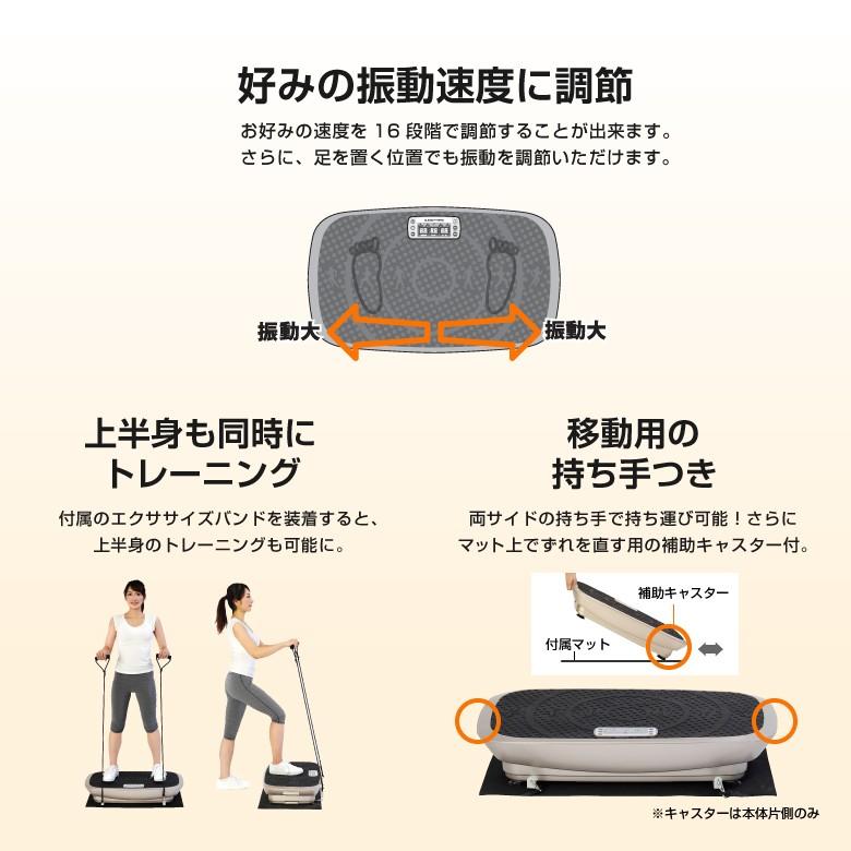 3D振動マシン バランスウェーブ/FAV3017_05