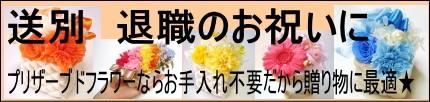 送別/退職祝い
