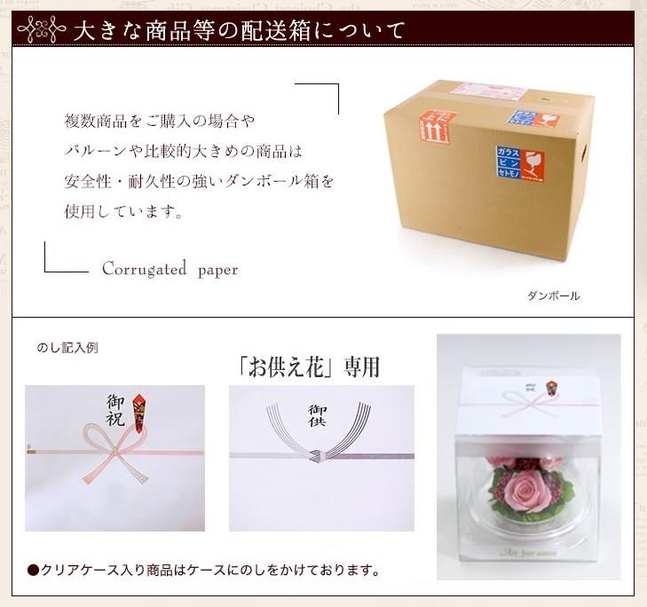 のし・BOX