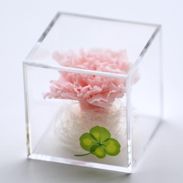 プリザーブドフラワー 誕生日 プレゼント キューブ光るバラ 花 ギフト 名入り 誕生日プレゼント 還暦祝い 女性 結婚記念日 退職祝い|a4s|24