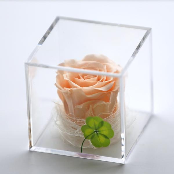 プリザーブドフラワー 誕生日 プレゼント キューブ光るバラ 花 ギフト 名入り 誕生日プレゼント 還暦祝い 女性 結婚記念日 退職祝い|a4s|23