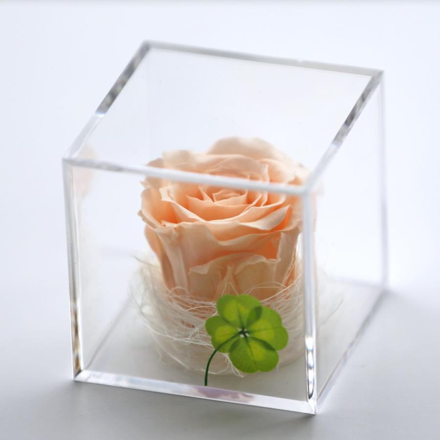 プリザーブドフラワー  誕生日 プレゼント 「キューブ」 光るバラ 花 ギフト 名入り 誕生日プレゼント 還暦祝い 女性 結婚記念日 退職祝い|a4s|23