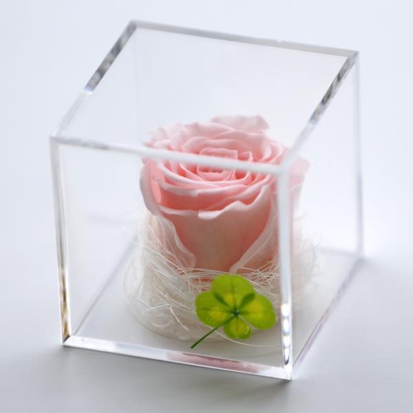 プリザーブドフラワー 誕生日 プレゼント キューブ光るバラ 花 ギフト 名入り 誕生日プレゼント 還暦祝い 女性 結婚記念日 退職祝い|a4s|21