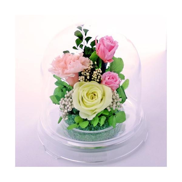 ハーフ 光るバラホタル プリザーブドフラワー ホワイトデー Whiteday 2019 バラ 還暦祝い 誕生日プレゼント 退職祝い 女性 結婚記念日|a4s|14