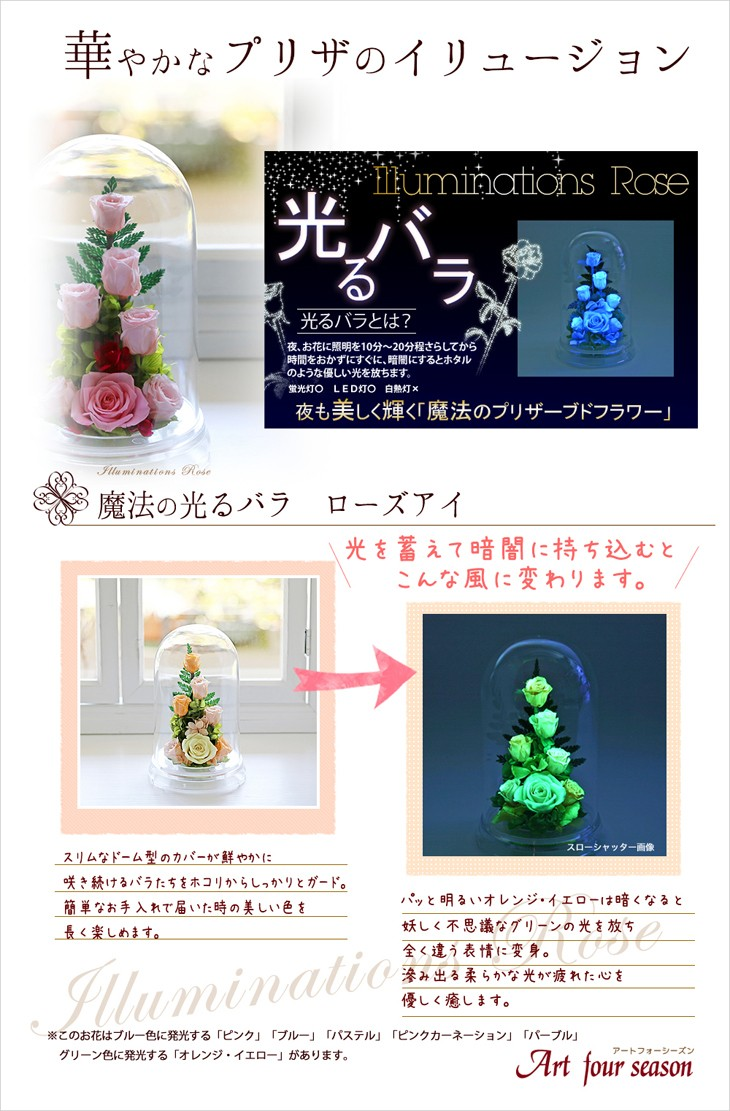 光るバラ - こんな風に変わります。プリザーブドフラワーアレンジメントのアートフォーシーズン