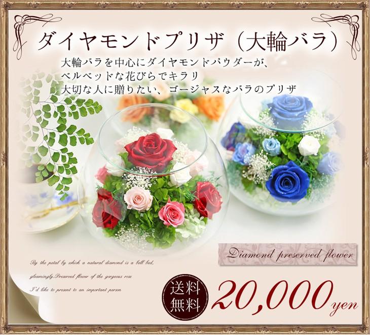 ダイヤモンドプリザ 送料無料20000円