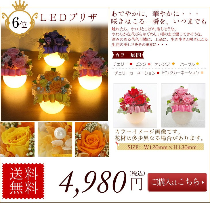 第6位  LEDプリザ4980 円 送料無料
