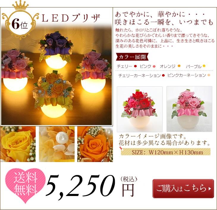 第6位  LEDプリザ 5250 円 送料無料