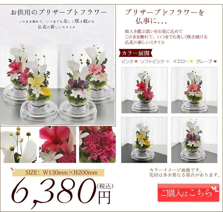 お供え花カラー ランキング第3位