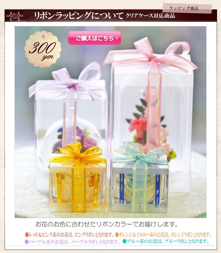 クリアケース対応リボン 300円