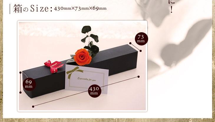 箱のサイズ 430mm 73mm 69mm