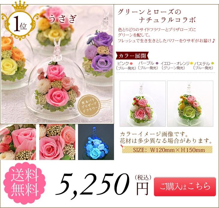 第1位うさぎ 5250円 送料無料