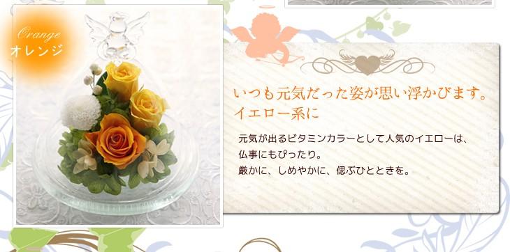 パッと明るい印象のオレンジ系ローズ