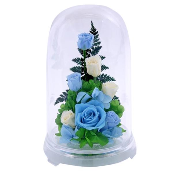 プリザーブドフラワー PR バラ 誕生日プレゼント 結婚記念日 プレゼント 還暦祝い 退職祝い 女性 ギフト 結婚祝い 贈り物|a4s|09